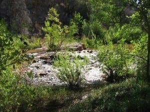 island in the stream