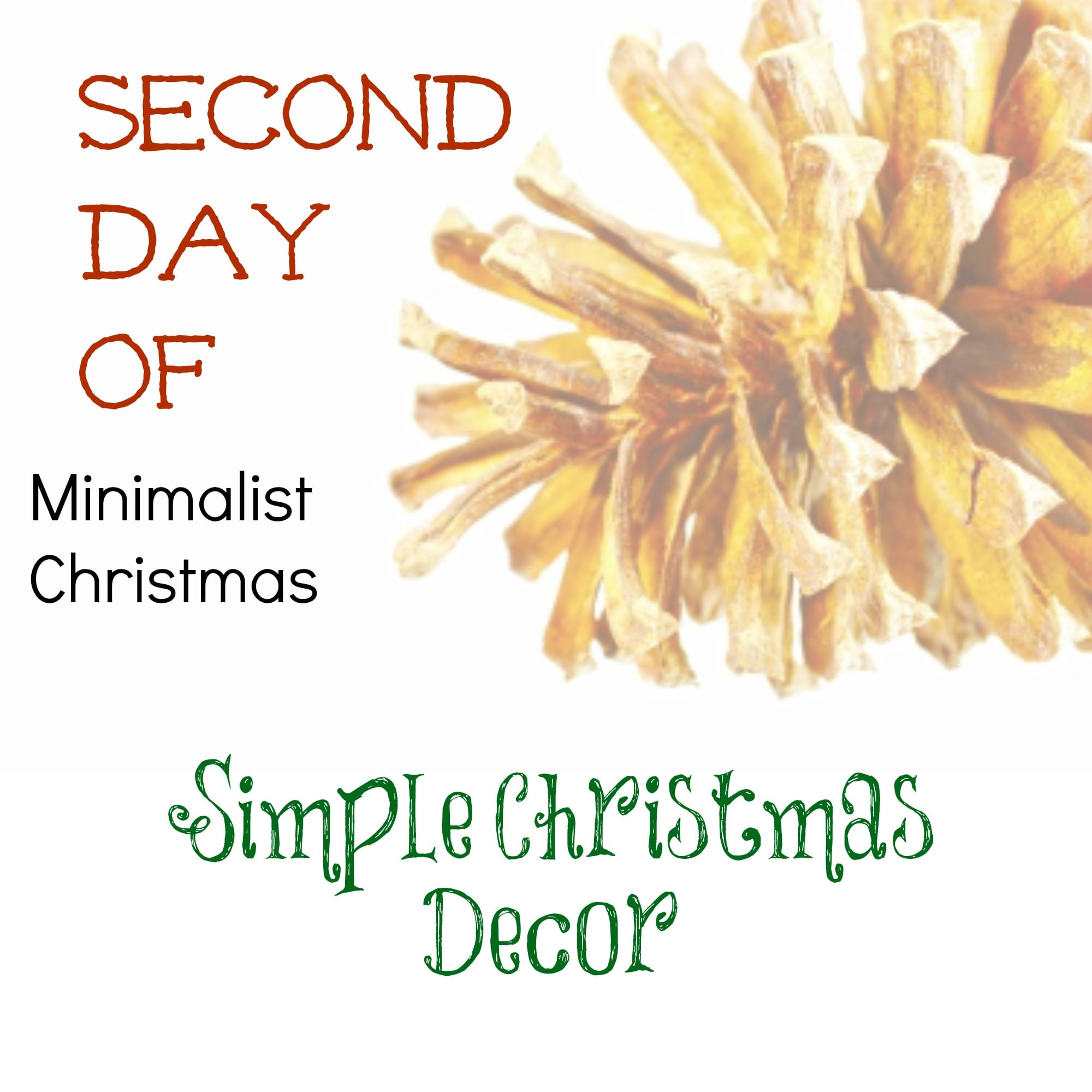 Second day of minimalist christmas simple christmas decor for Minimalist christmas