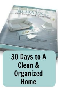 30 days to a clean and organized home Rachel Jones