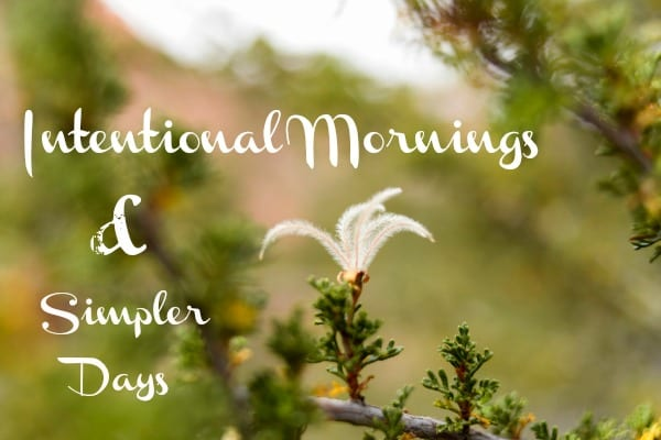intentional mornings simpler days